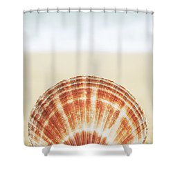 Clam Shell Shower Curtain by Brandon Tabiolo - Printscapes