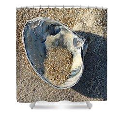 Clam Shell On Sea Girt Beach Shower Curtain by Melinda Saminski
