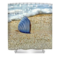Clamshell In The Waves On Assateague Island Shower Curtain