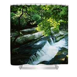 Clare Glens, Co Clare, Ireland Shower Curtain by The Irish Image Collection
