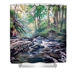 Shower Curtain featuring the painting Clare Glens ,co Tipparay Ireland by Paul Weerasekera