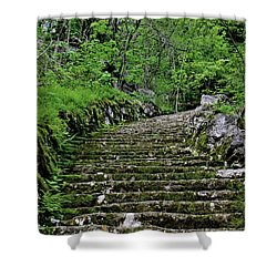 Shower Curtain featuring the photograph Clark Reservation  by Suzanne Stout