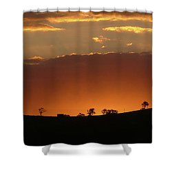 Clarkes Road II Shower Curtain
