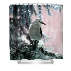 Clark's Nutcracker Shower Curtain