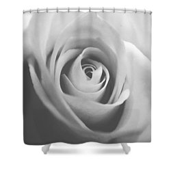 Classic Bw Rose Shower Curtain