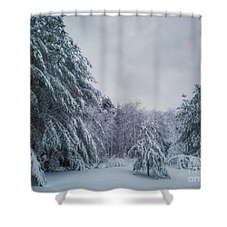 Classic Winter Scene In New England  Shower Curtain
