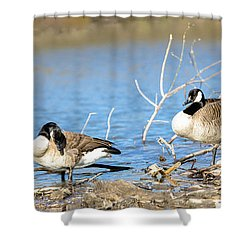 Shower Curtain featuring the photograph Cleaning On Debris by Steven Santamour