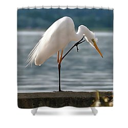 Cleaning White Egret Shower Curtain
