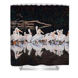 Clear Lake Pelicans Shower Curtain