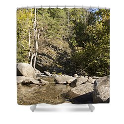 Clear Water Stream Shower Curtain by Ricky Dean