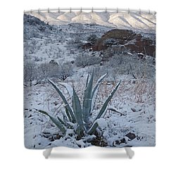 Clearing Desert Snowstorm Shower Curtain
