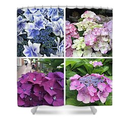 Hydrangea Season Shower Curtain by Nancy Ingersoll