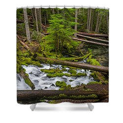 Clearwater Creek Rapids Shower Curtain by Greg Nyquist