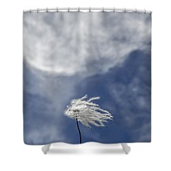 Clematis And Clouds Shower Curtain