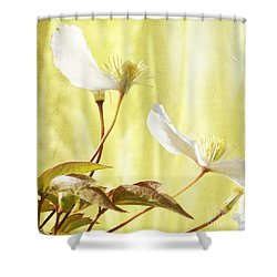 Clematis And Sunshine Shower Curtain by Cindy Garber Iverson