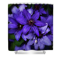 Clematis Shower Curtain by Elaine Manley