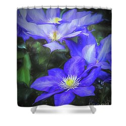 Clematis Shower Curtain by Linda Blair