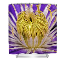Clematis Macro Shower Curtain