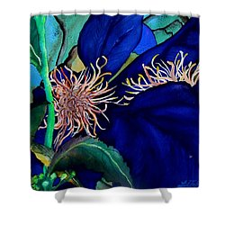 Clematis Regal In Purple And Blue Sold Shower Curtain by Lil Taylor