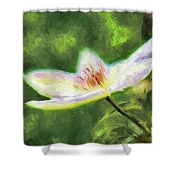 Clematis Study Shower Curtain