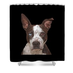 Cleo  Shower Curtain