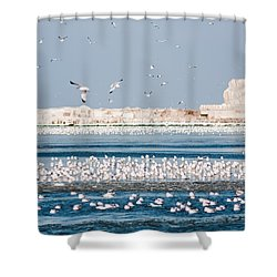Cleveland Lighthouse In Ice  Shower Curtain