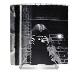 Click Shower Curtain