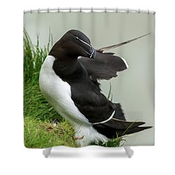 Cliff Edge 2 Shower Curtain by Nigel Wooding