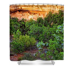 Cliff Palace At Mesa Verde National Park - Colorado Shower Curtain by Jason Politte