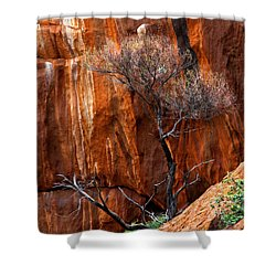 Clinging To Life Shower Curtain by Mike  Dawson