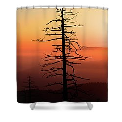 Shower Curtain featuring the photograph Clingman's Dome Sunrise by Douglas Stucky