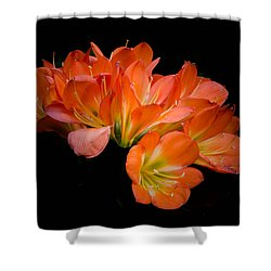 Clivia Flora Shower Curtain by Bruce Pritchett