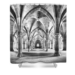Cloister Black And White Panorama Shower Curtain