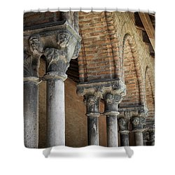 Shower Curtain featuring the photograph Cloister Columns, Couvent Des Jacobins by Elena Elisseeva