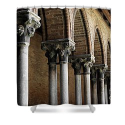 Shower Curtain featuring the photograph Cloister Detail, Couvent Des Jacobins by Elena Elisseeva