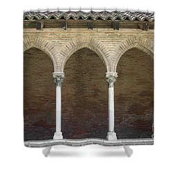 Shower Curtain featuring the photograph Cloister In Couvent Des Jacobins by Elena Elisseeva