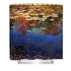 Close By The Lily Pond  Shower Curtain
