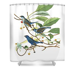Shower Curtain featuring the photograph Close Friends by Munir Alawi