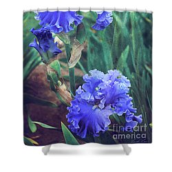 Shower Curtain featuring the photograph Close To Heaven by Linda Lees