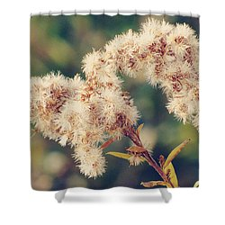 Close To You Shower Curtain by Amy Tyler