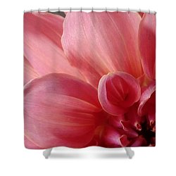 Close-up Dahlia Shower Curtain by Karen Molenaar Terrell
