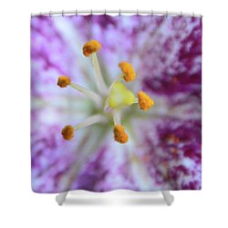 Close Up Flower Shower Curtain