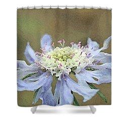 Close Up Of Blue Flower, Scabiosa, Digital Art Shower Curtain