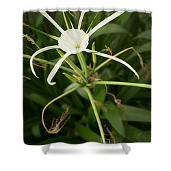 Close Up White Asian Flower With Leafy Background, Vertical View Shower Curtain