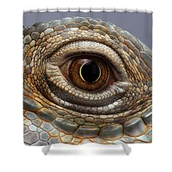 Closeup Eye Of Green Iguana Shower Curtain