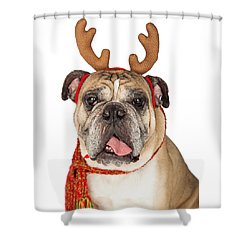 Closeup Of Christmas Reindeer Dog Shower Curtain