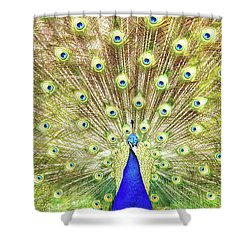 Closeup Of Peacock Displaying Train Shower Curtain by Susan Schmitz