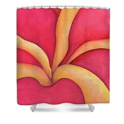 Closeup Of Red Rose Shower Curtain