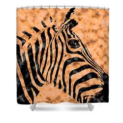 Shower Curtain featuring the digital art Cloud Face Zebra by Bartz Johnson
