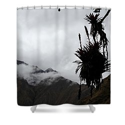 Cloud Forest Musings Shower Curtain